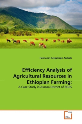 Efficiency Analysis of Agricultural Resources in Ethiopian Farming: