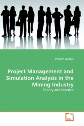 Project Management and Simulation Analysis in the Mining Industry