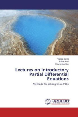 Lectures on Introductory Partial Differential Equations