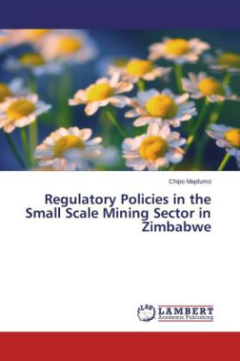 Regulatory Policies in the Small Scale Mining Sector in Zimbabwe