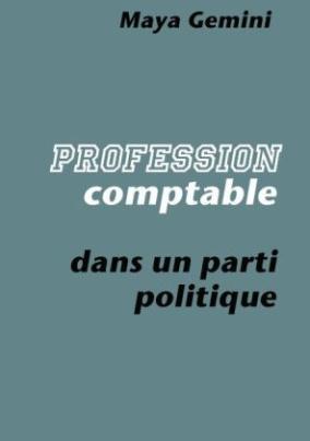 Profession : Comptable