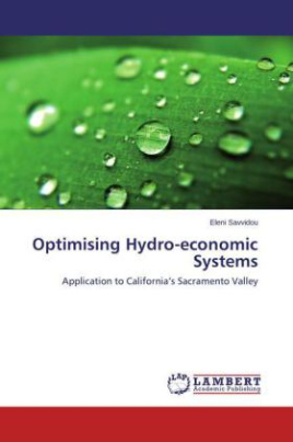 Optimising Hydro-economic Systems