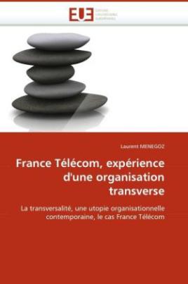 France Télécom, expérience d'une organisation transverse