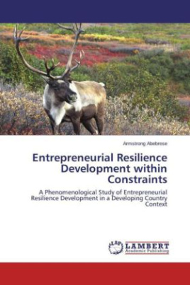 Entrepreneurial Resilience Development within Constraints