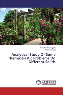 Analytical Study Of Some Thermoelastic Problems On Different Solids