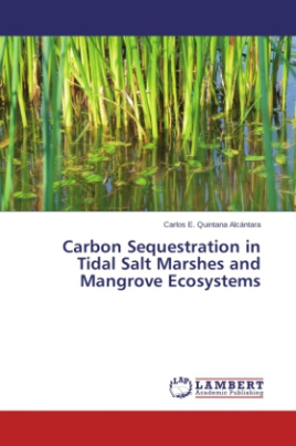 Carbon Sequestration in Tidal Salt Marshes and Mangrove Ecosystems
