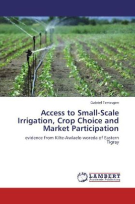 Access to Small-Scale Irrigation, Crop Choice and Market Participation