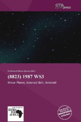 (8823) 1987 WS3
