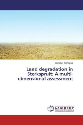 Land degradation in Sterkspruit: A multi-dimensional assessment