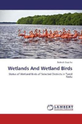 Wetlands And Wetland Birds