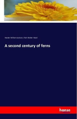A second century of ferns