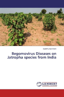 Begomovirus Diseases on Jatropha species from India