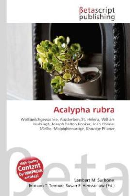 Acalypha rubra