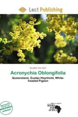 Acronychia Oblongifolia