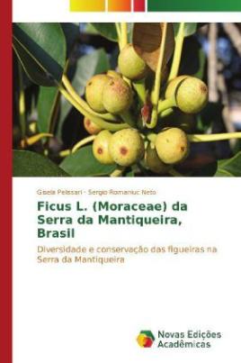 Ficus L. (Moraceae) da Serra da Mantiqueira, Brasil