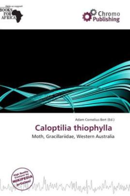 Caloptilia thiophylla