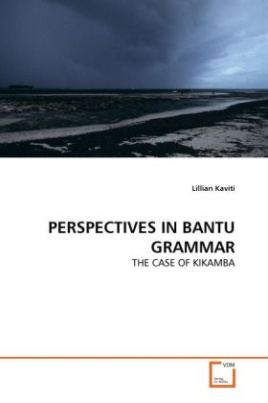 PERSPECTIVES IN BANTU GRAMMAR