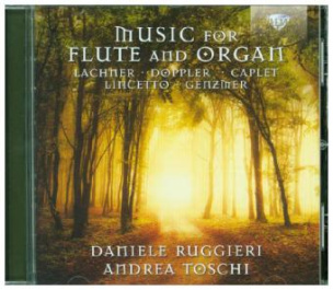 Music For Flute And Organ, 1 Audio-CD