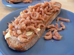 Krabbenbrot (Katerfrühstück)