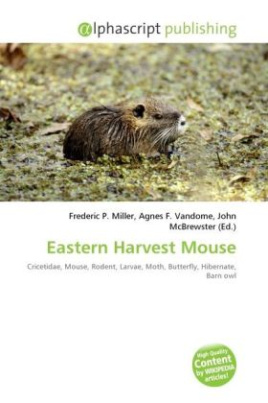 Eastern Harvest Mouse
