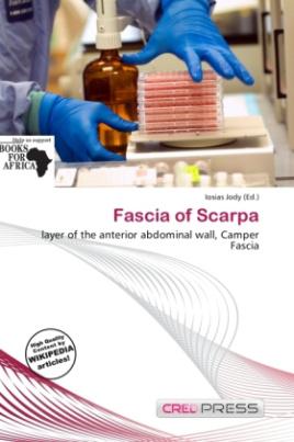 Fascia of Scarpa